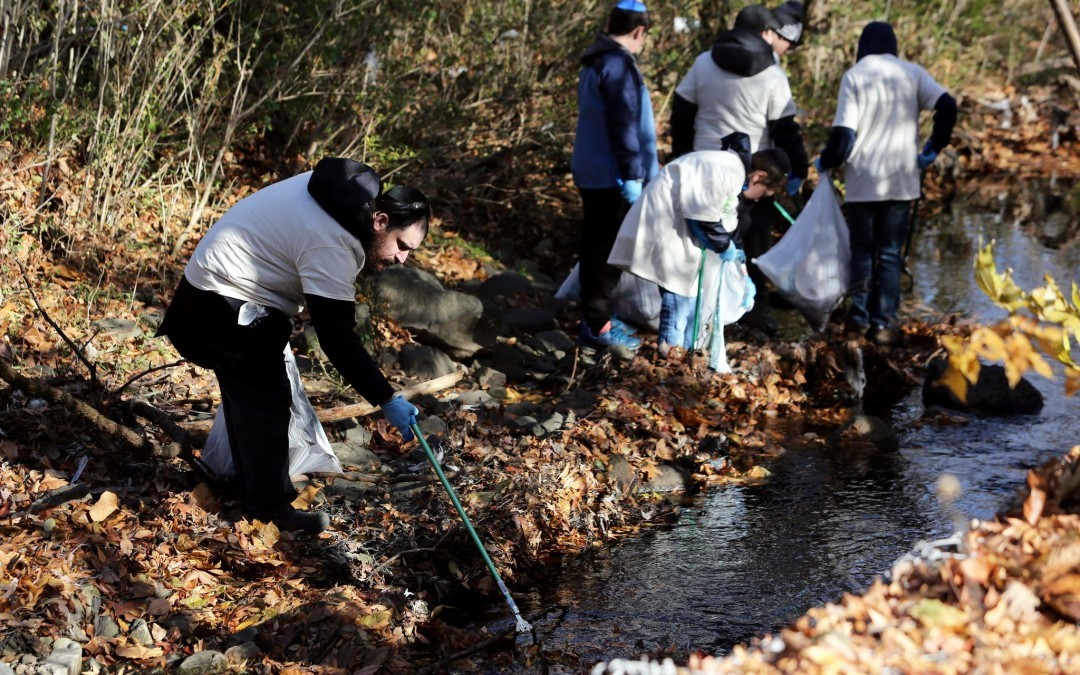 'Good Neighbor Day' Draws Volunteers to Clean Stream Area, Help Seniors