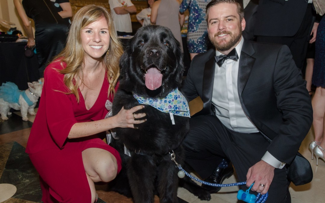 Baltimore Humane Society's Black Tie & Tails Gala is Always a Crowd-Pleaser