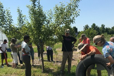 Baltimore Orchard Project Brings Hope to City Neighborhoods