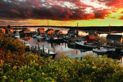 Dazzling Delights and New England Grace in Martha's Vineyard