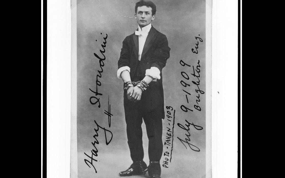 Houdini in Milk Crate