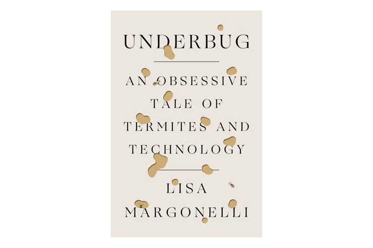 'Underbug'