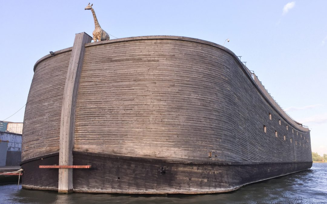 This Dutch Christian Boatmaker Wants to Sail His Life-Size Replica of Noah's Ark to Israel