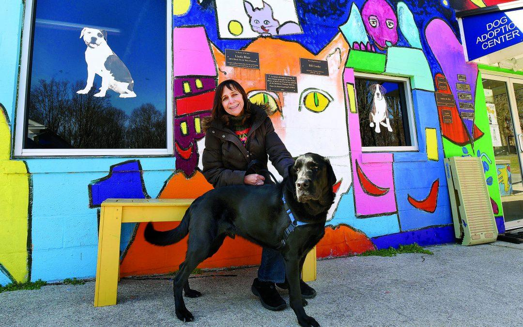 Baltimore Humane Society Needs Funding to Help Animals in Need of Adoption
