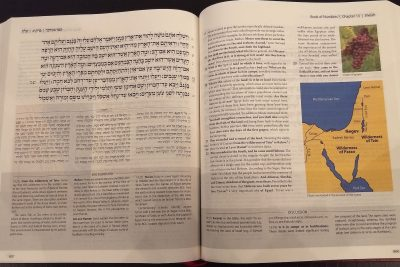 ArtScroll Prayer Books Have Dominated in Orthodox Synagogues for Decades. Is that Ending?