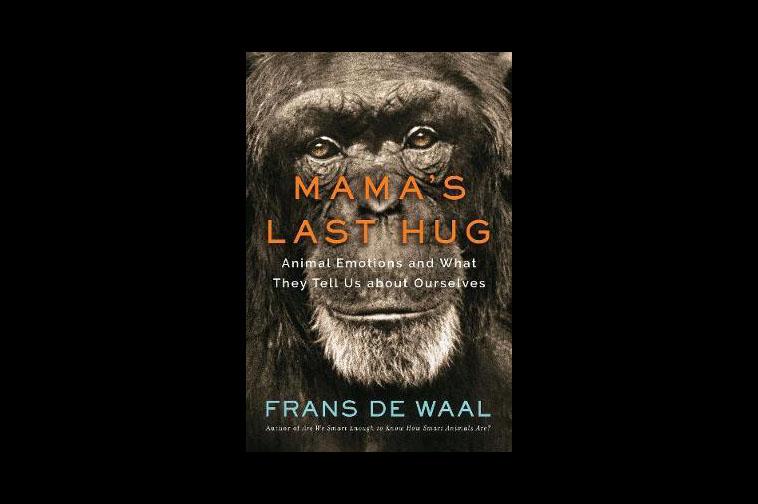 'Mama's Last Hug'