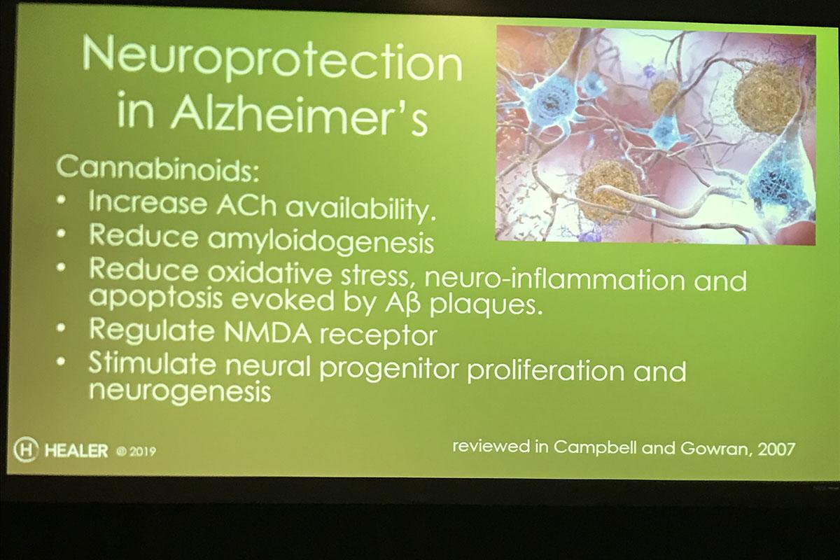 Info slide on Alzheimer's