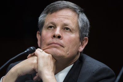 Montana Rabbis Condemn Sen. Steve Daines for Support of President's Tweets
