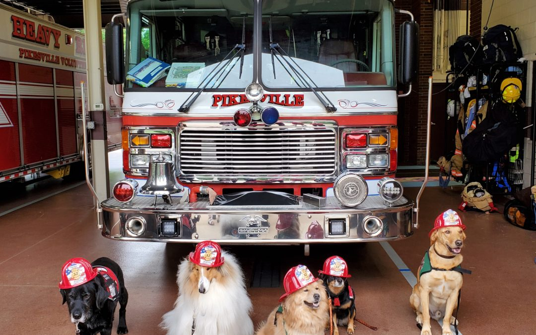Pikesville Volunteer Fire Company Goes to the Dogs for a Good Cause