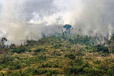 Israel to Aid Brazil in Fighting Amazon Rainforest Fires