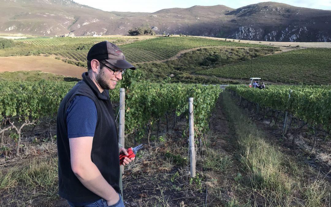 Life of a Bi-Hemispheric Winemaker