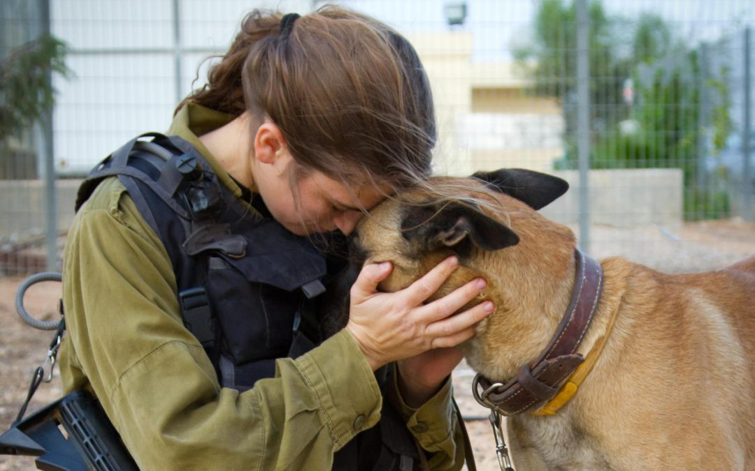 Friends of the Israel Defense Forces Invests in the Future of the Jewish People